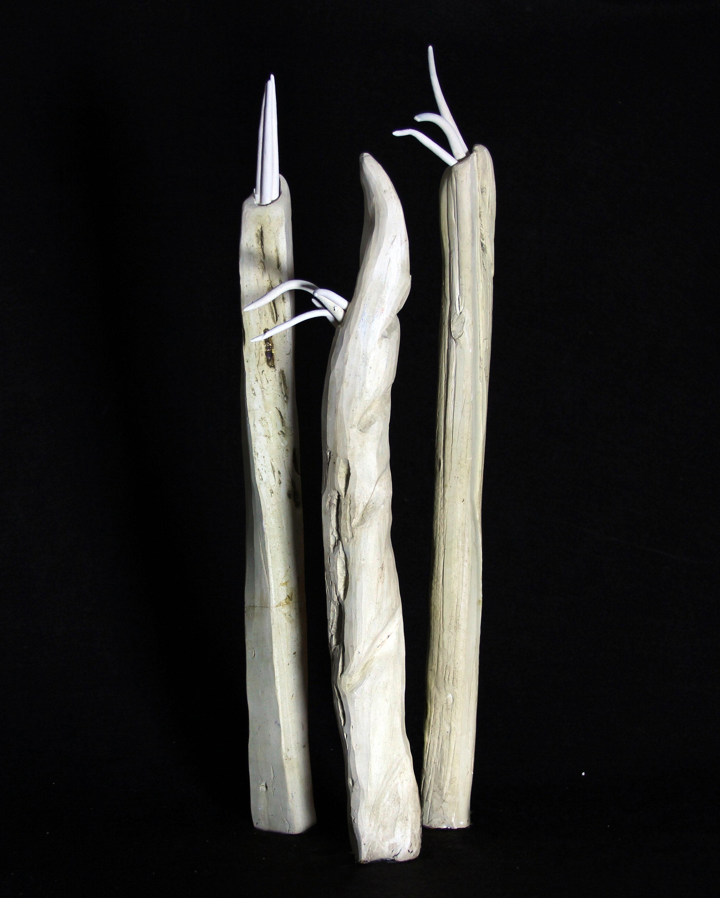 Cactus Filamentis III
