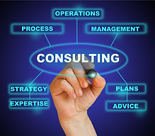 Diversity Consulting