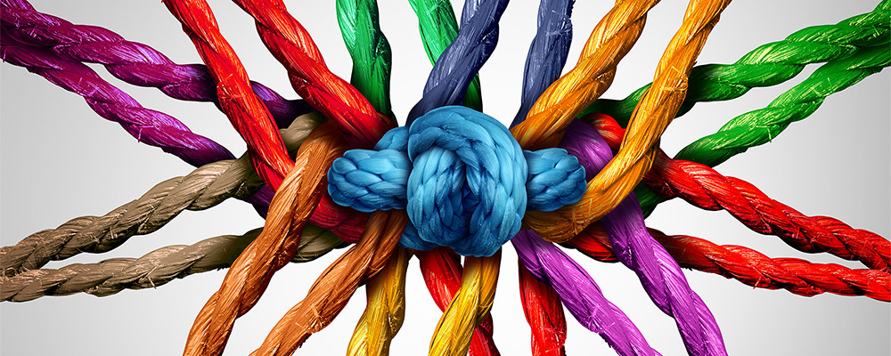 embedding-diversity-creates-a-stronger-business