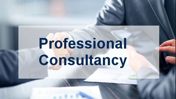 professional-diversity-consulting