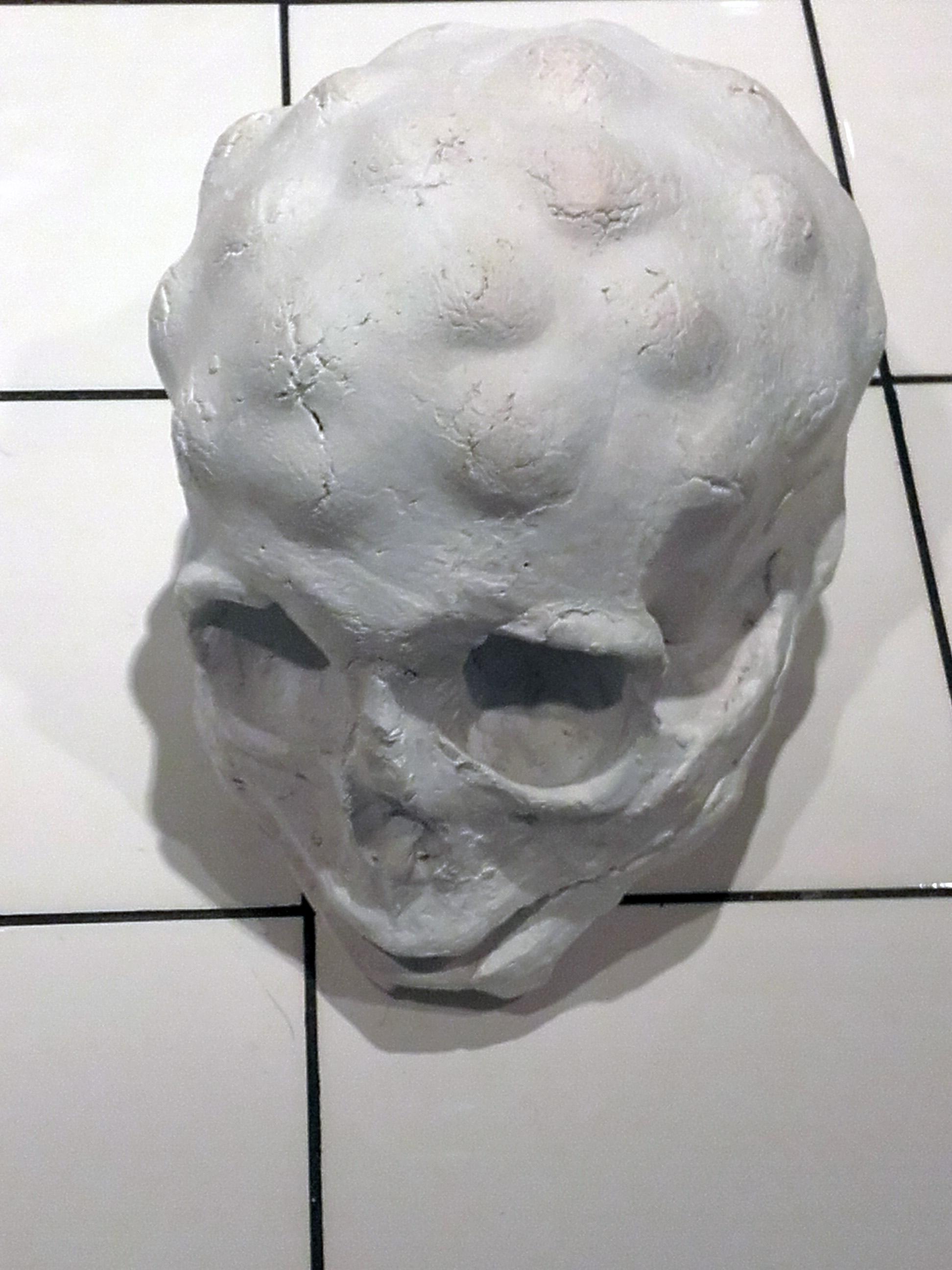 """Crâne à bosses"""