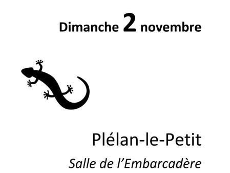 """""""Plé art"""" - PLELAN LE PETIT"""