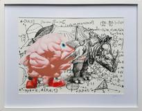 Cerebellum rhinocéros