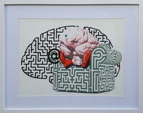 """Cerebellum labyrinthe"""