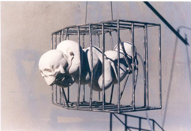 Chimère encagé