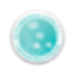 Hypnobirthing_CP_Seal_WEB (transparent).