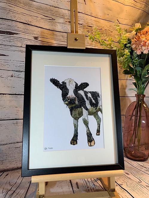 Holstein Friesian Limited Edition Print