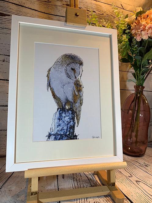Barn Owl Limited Edition Print