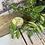 Thumbnail: Beeswax Lipbalm-100% Natural image 0 Beeswax Lipbalm-100% Natural image 1 Beesw