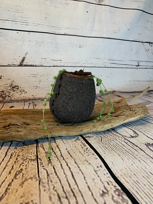 Small Black Ceramic Pot