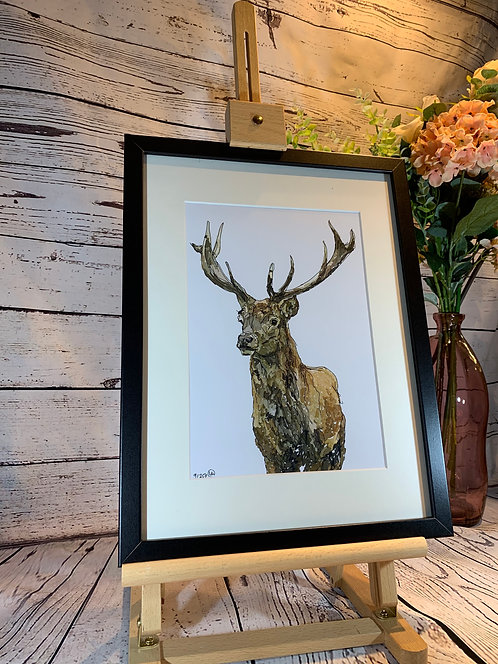 Red Stag Limited Edition Print