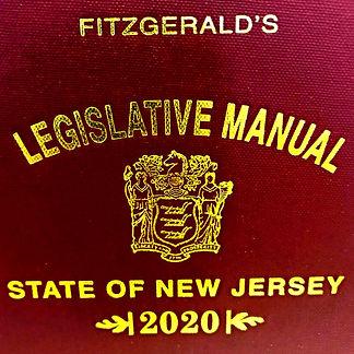 Fitz_2020_Cover_edited_edited_edited_edi