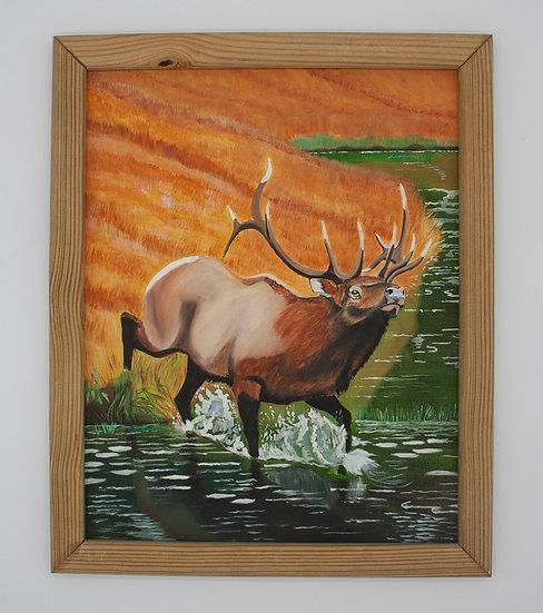 Splashing Moose