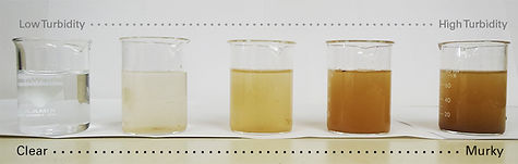 turbidity_gradient.jpg