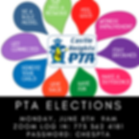 PTAELECTIONS2020.png