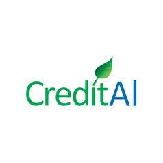 Credit AI