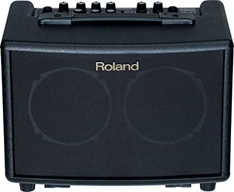 Enceinte  Roland AC-33