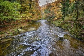 exmoor-river-768x509.jpg