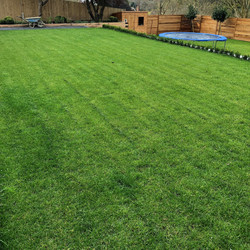 turfing from Sussex