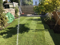 turfing from Brighton landscapes