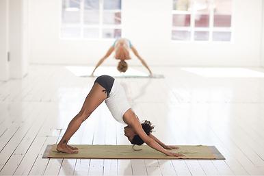 yoga 7.png