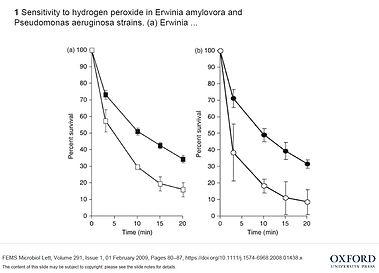 effect of h2o2 (erwinia oxford).jpg