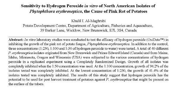 effect of h2o2 (rot of potatoes).jpg