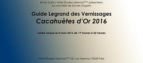 2016 guide legrand bandeau.jpg