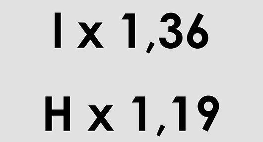 P 8 1 g.jpg