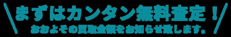 カンタン査定.png