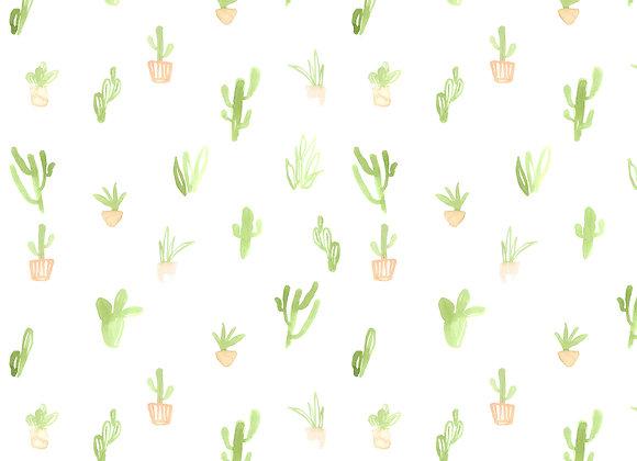EM205 Mini Cacti