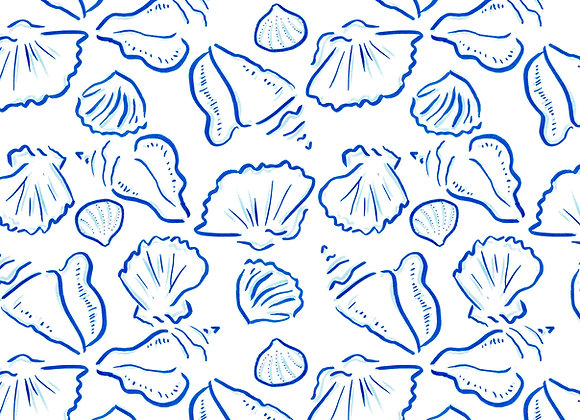 EM273 Shell Sketches