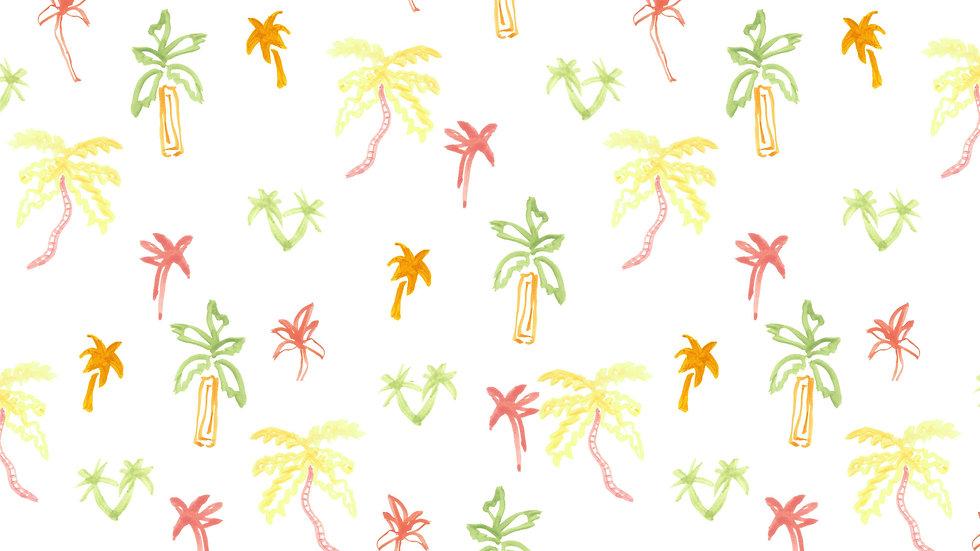 Micro Palms