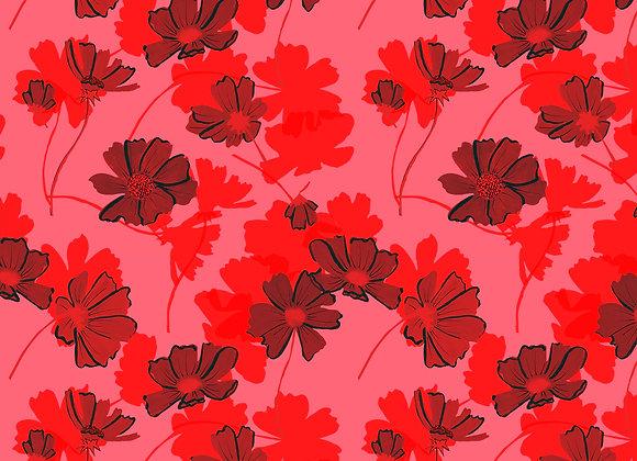EM111 Cosmos Floral