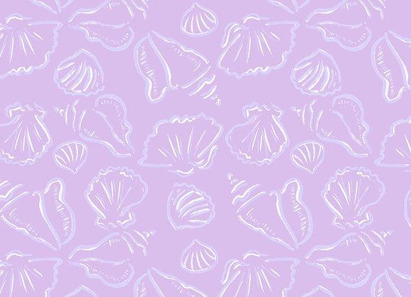EM273 Shell Sketches - coloured