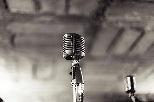 Микрофон, устный перевод