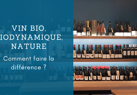 Vin bio, bio dynamique, nature. Comment faire la différence ?