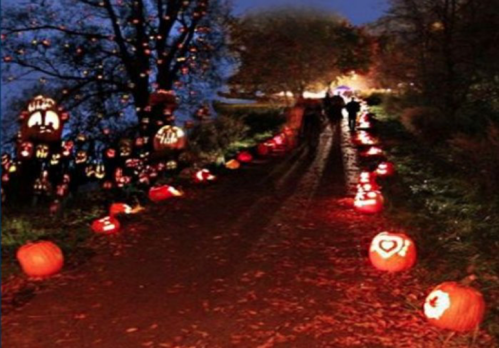 The trail will be all lit up this weekend!