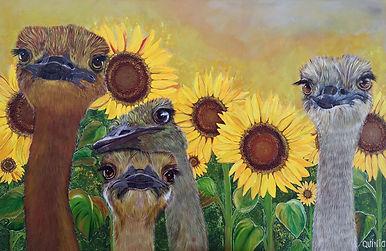 Les Demoiselles du Soleil.jpg
