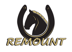 Remount_Logo.png