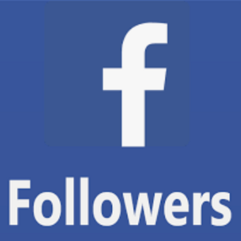 Facebook follows (100 per order)