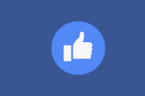 Facebook Likes (100 per order)