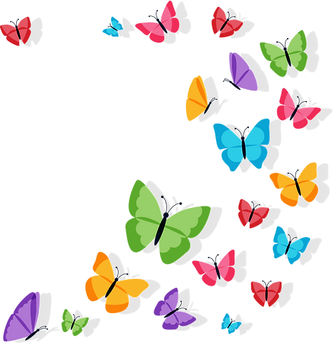 colorbutterfly.png