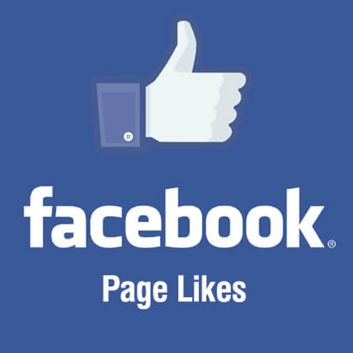 Facebook Page Likes (100 per order)