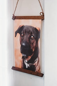 hanging-canvas.jpg