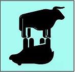 bull bear logo.JPG