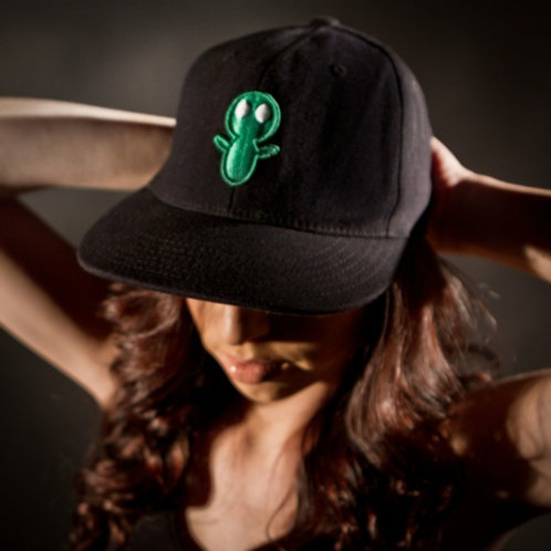 Flex Fit Black Hat with Green Logo
