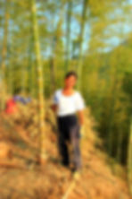 photographe francais french photographer travel photography photographie voyage people local portrait street locaux man chinese chine china bamboo forest mukeng bambou foret