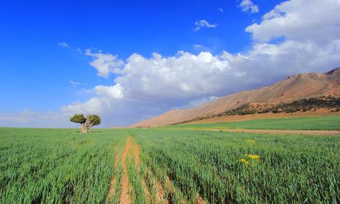 Environs d'Himelt, Maroc