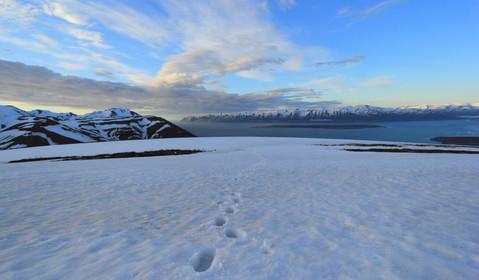 Tröllaskagi, above Dalvik, Islande